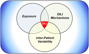 DILIsym - Exposure - DILI Mechanisms - Inter-patient Variability Venn Diagram